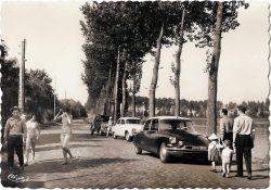 Brunémont 1960